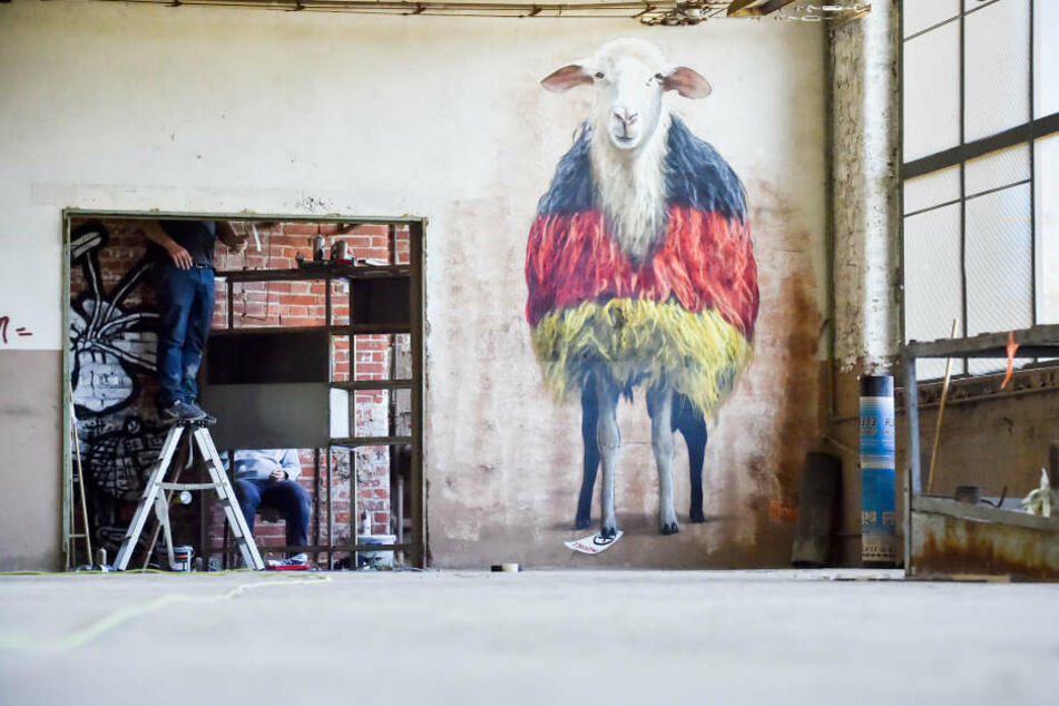 Die IBUg 2017 in Chemnitz war bestens besucht. Das Urban-Art-Festival findet seit 2006 jährlich an wechselnden Orten statt.
