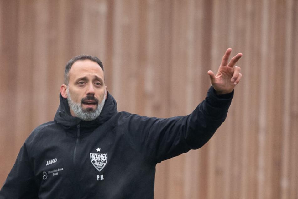Pellegrino Matarazzo ist der neue Cheftrainer beim VfB Stuttgart.