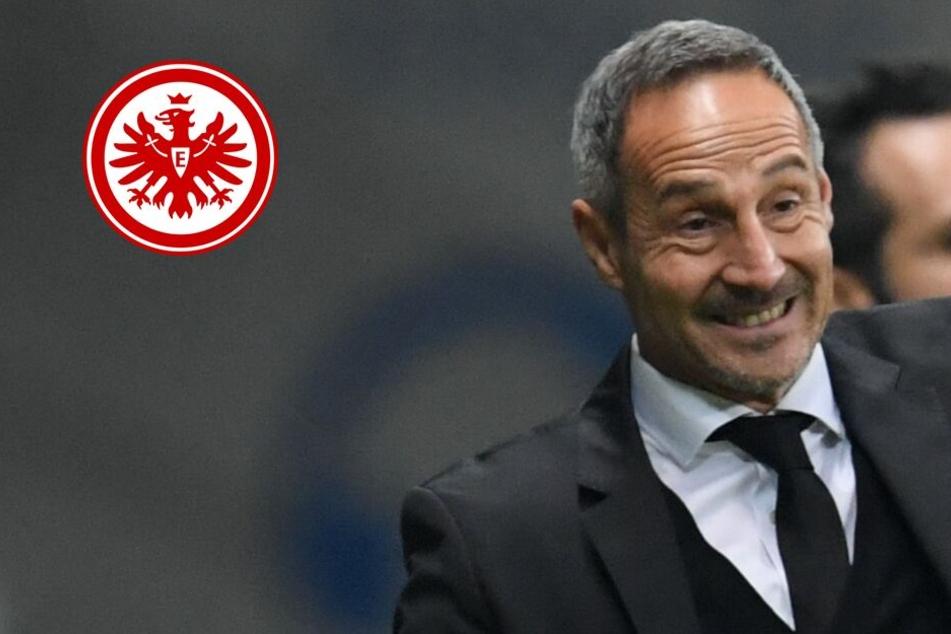 Sperre? Easy! Eintracht-Coach Hütter hofft auf guten Sitzplatz im San Siro