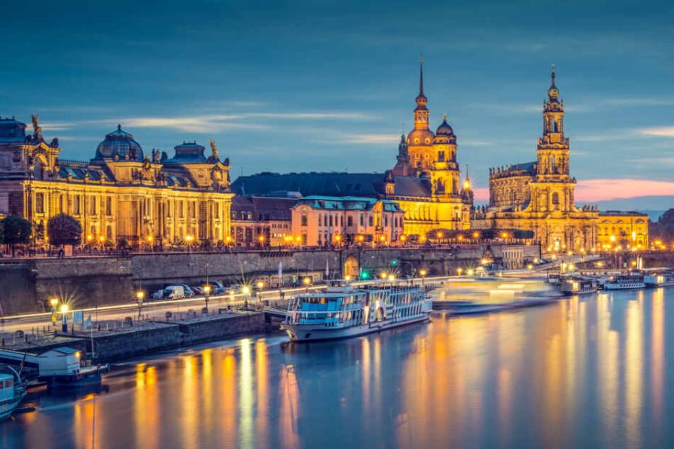 Das sind die Konzert-Highlights des Jahres in Dresden.