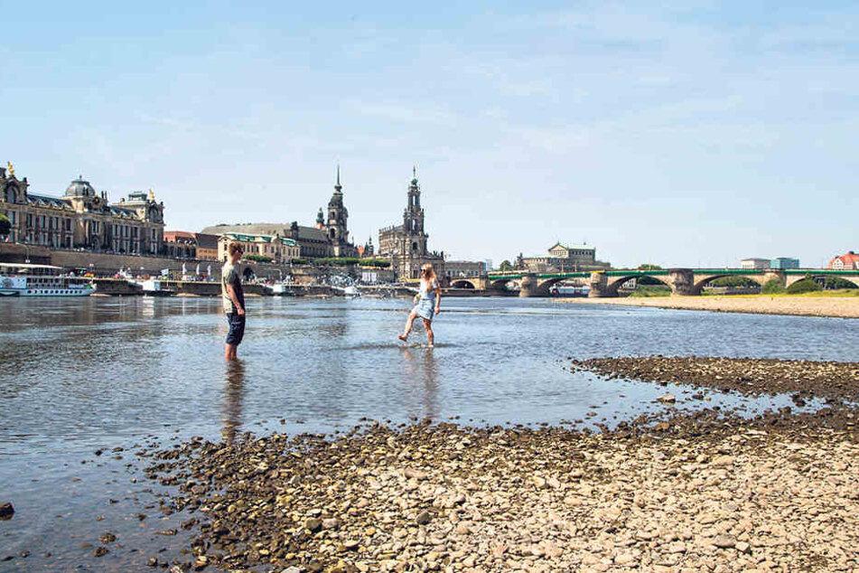 Ebbe in der Elbe! Tschechien hilft Dresden mit 'ner Welle
