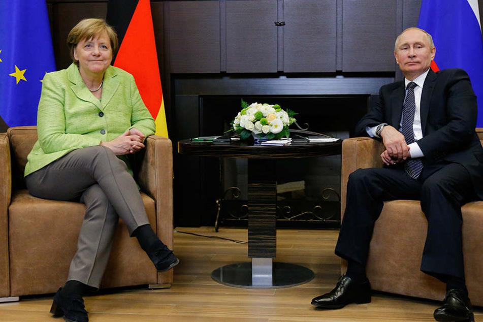 Angela Merkel und der russische Präsident Wladimir Putin sprachen vor allem über die Ukraine.