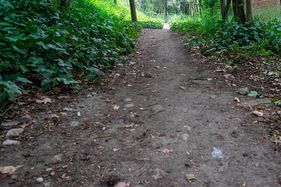 Der Mann lag neben einem Waldweg und war nicht ansprechbar. (Symbolbild)