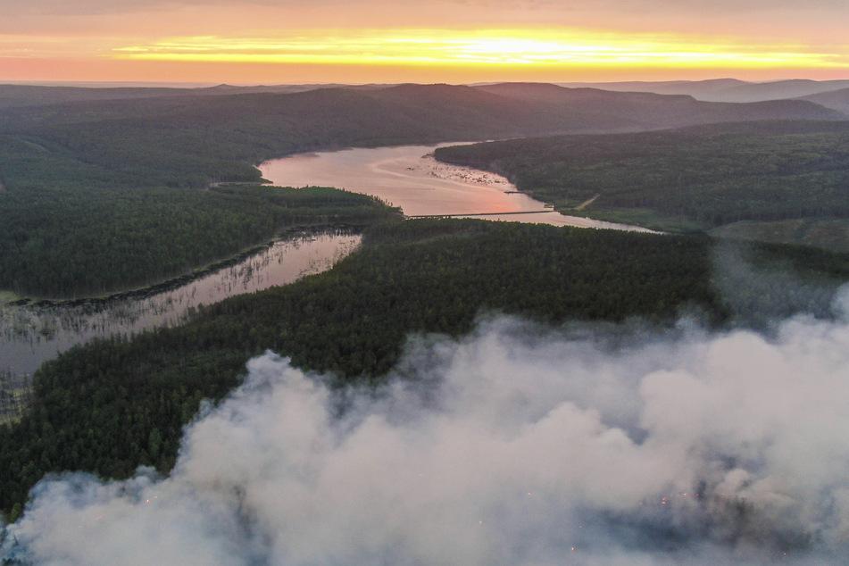 Dieses von Greenpeace Russland veröffentlichte Foto zeigt einen Waldbrand in der Region Krasnojarsk. (Archivbild)