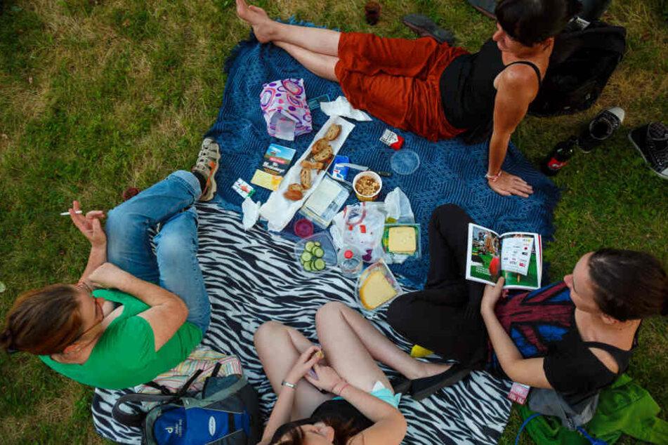 Entspannt in den Sonntag starten - geht auch mit der ganzen Familie zum Palais Picknick.