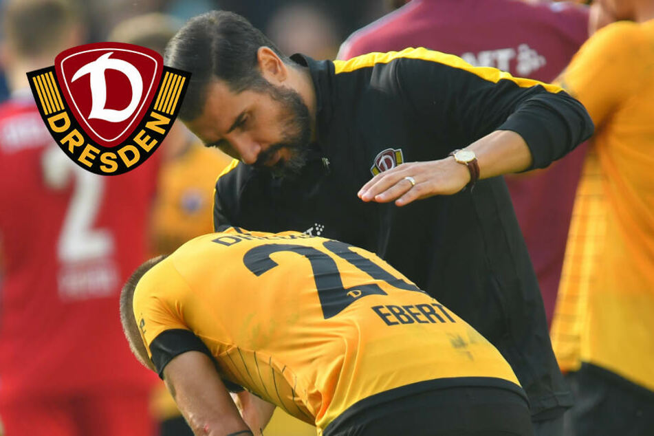"""Dynamo-Trainer Fiel schaut trotz Niederlage nach vorn: """"Aufgeben ist keine Option"""""""