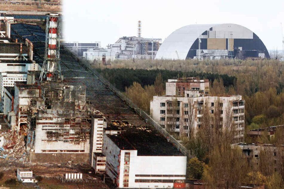 Immer mehr Touris besuchen Tschernobyl und begeben sich in große Gefahr
