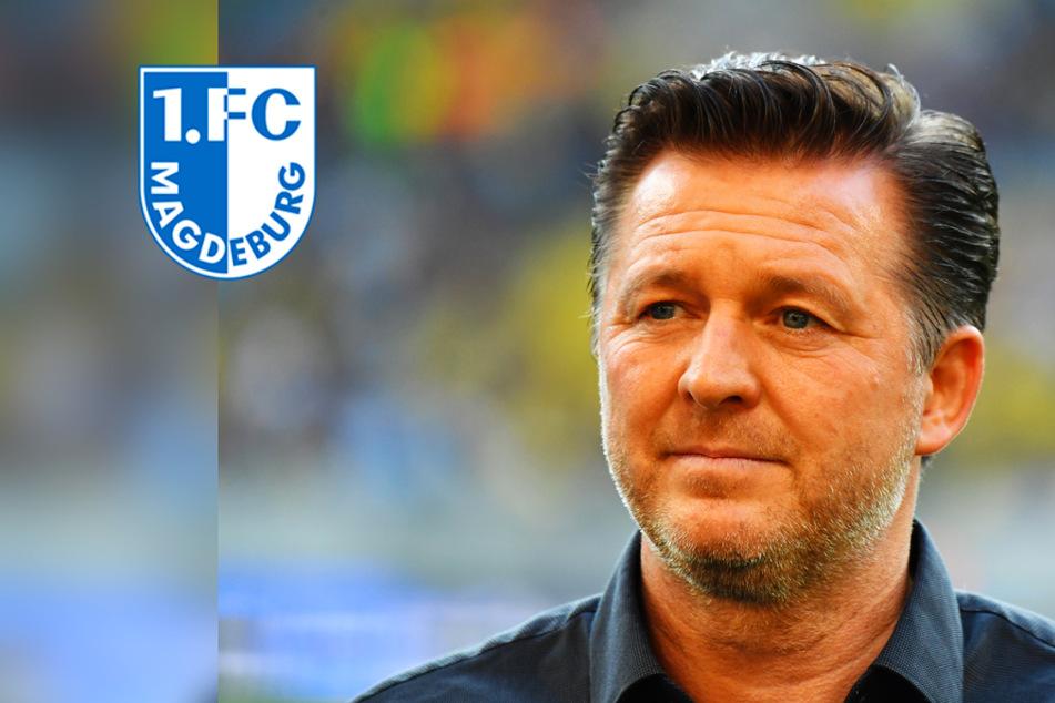 Trainer-Hammer! Ex-HSV-Coach Titz neuer Trainer des 1. FC Magdeburg