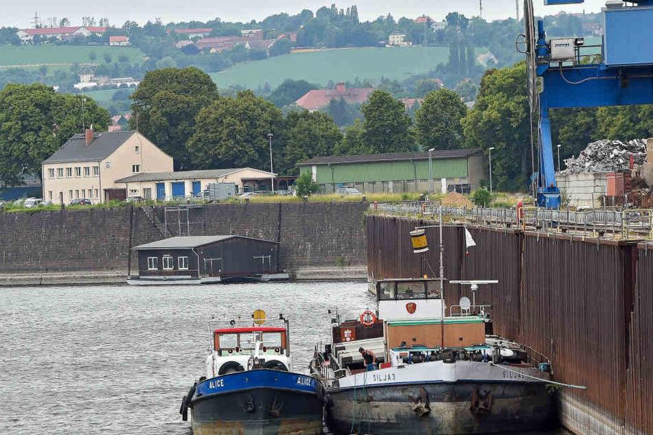 Der Dresdner Alberthafen. Hier werden normalerweise Güter vom Schiff auf die Straße oder auch umgekehrt ausgeladen. Derzeit aber nicht: Das Hafenbecken führt kaum noch Wasser.