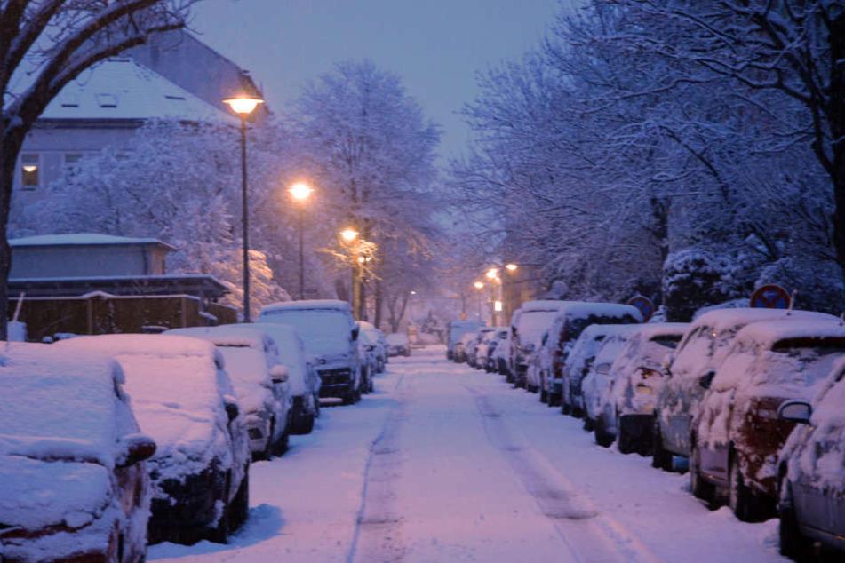 Der Erfurter Storchmühlenweg zeigte sich am Morgen ebenfalls in weißer Pracht.