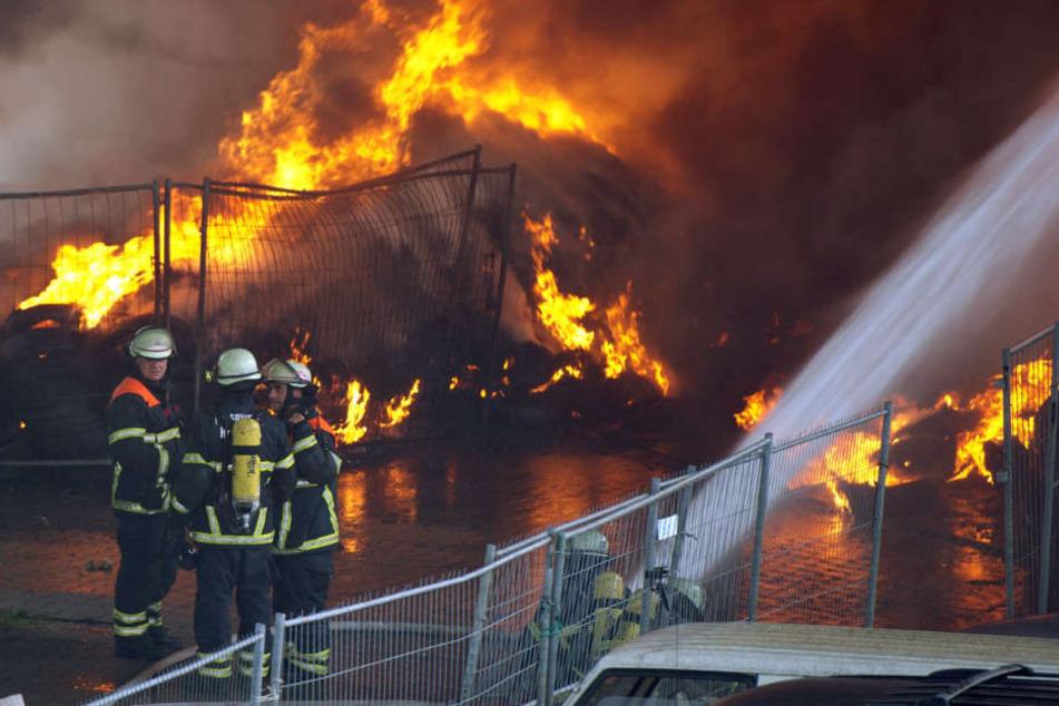 Mit einem Großaufgebot kämpft die Feuerwehr gegen die Flammen. (Symbolbild)