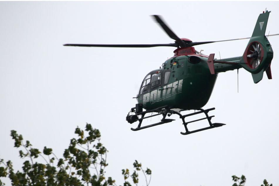 Ein Hubschrauber und Hunde sind im Einsatz. (Symbolbild)