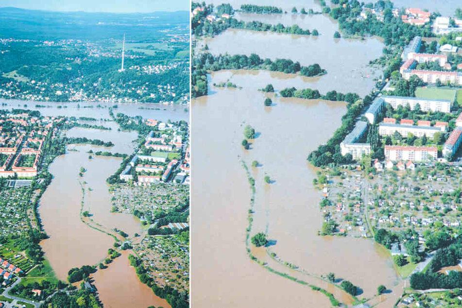 Das Hochwasser 2013 hat viele Kleingärten am Altelbarm überflutet.