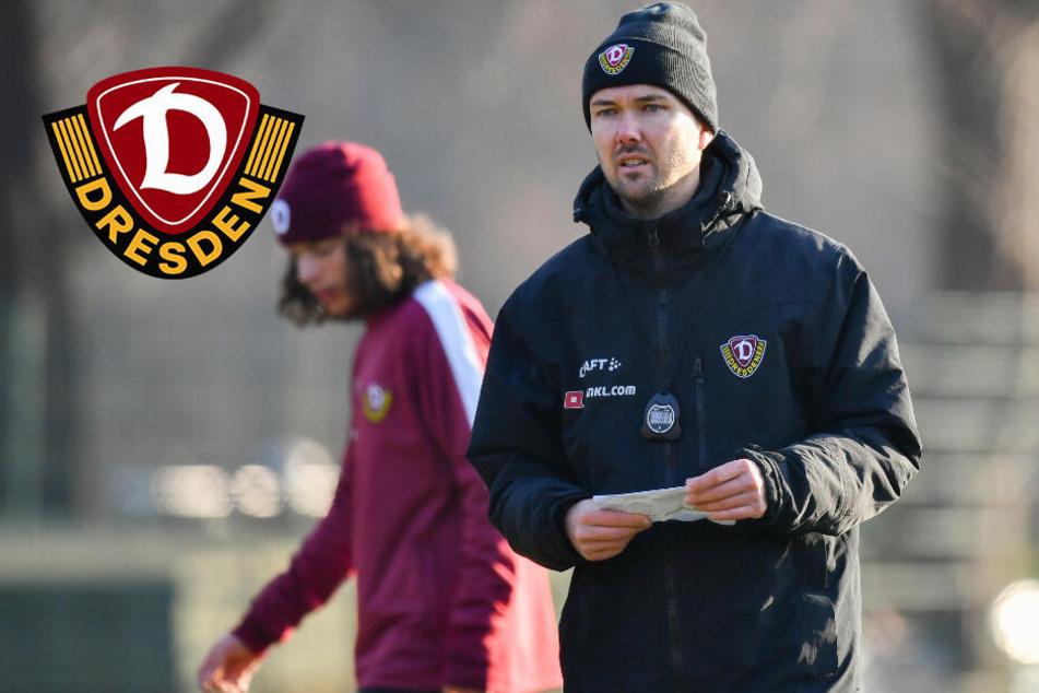 Zweiter Co-Trainer für Dynamo Dresden