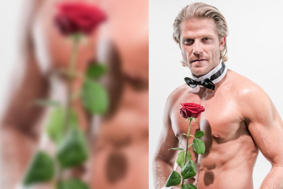Durch seine Rolle als Bachelor, der in der gleichnamigen TV-Show Rosen an Frauen vergibt, gelangte Paul Janke zu Bekanntheit.