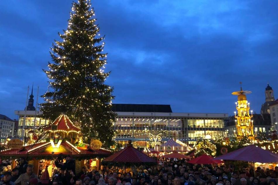 Dresdner Striezelmarkt eröffnet! Jetzt kann Weihnachten kommen
