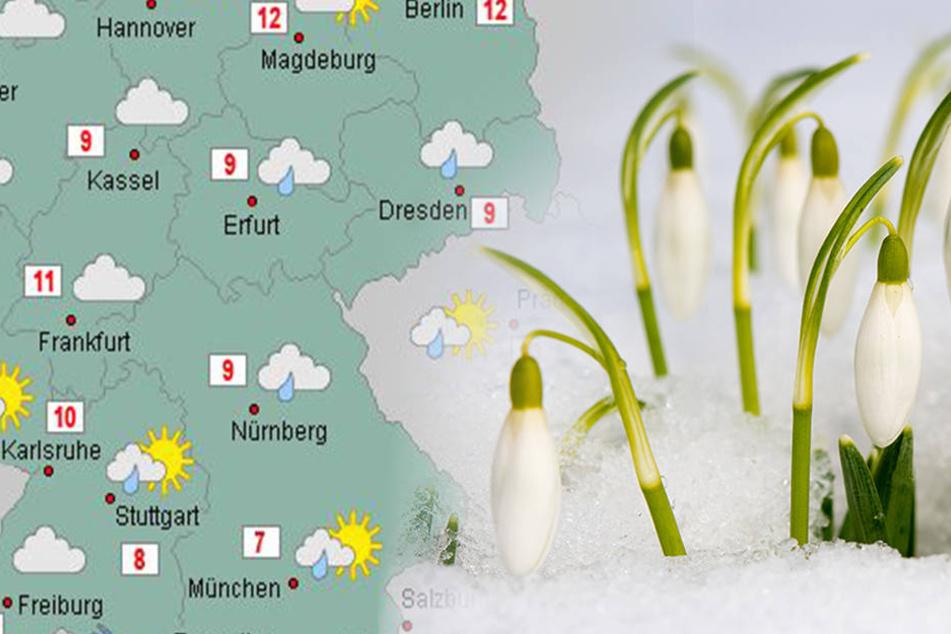 In den kommenden Tagen ist wieder mit Bodenfrost zu rechnen.