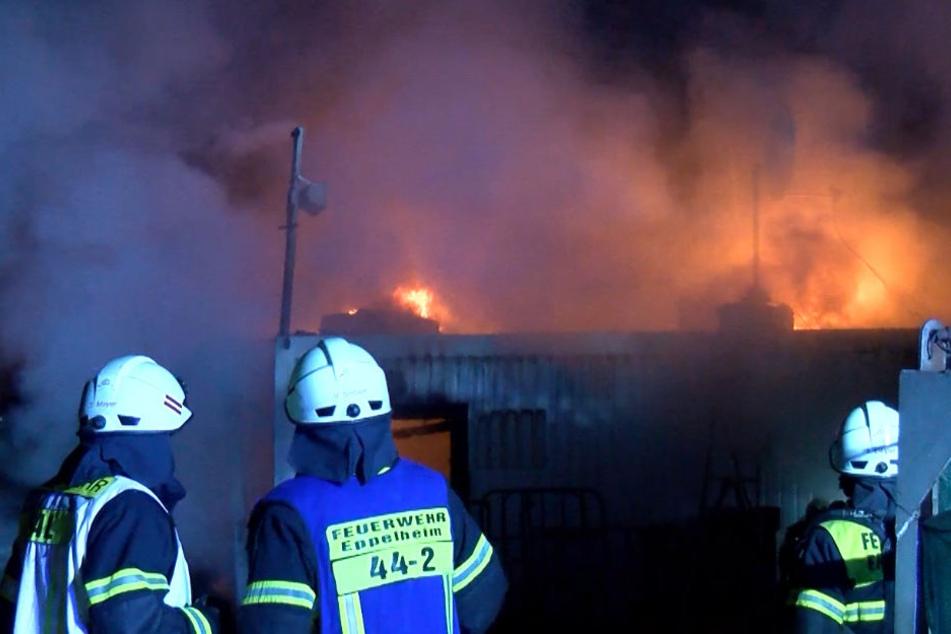 Die Feuerwehr konnte nicht verhindern, dass der Bürocontainer ausbrannte.