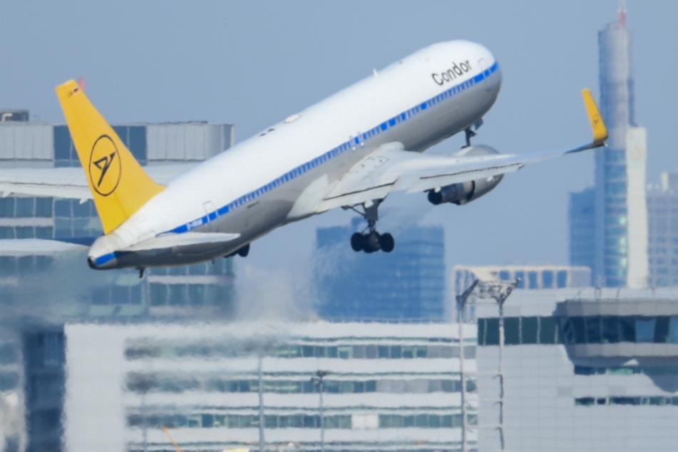 Ein Passagierflugzeug der Condor startet am Frankfurter Flughafen - bald auch wieder nach Kuba (Symbolbild).