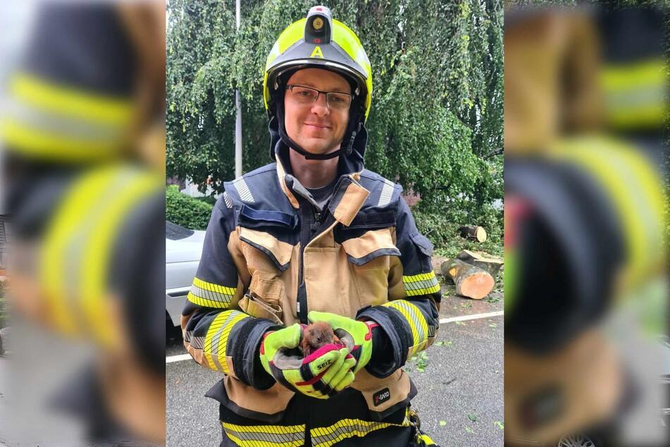 Ein Feuerwehrmann hält das gerettete Eichhörnchen-Baby in seinen Händen.
