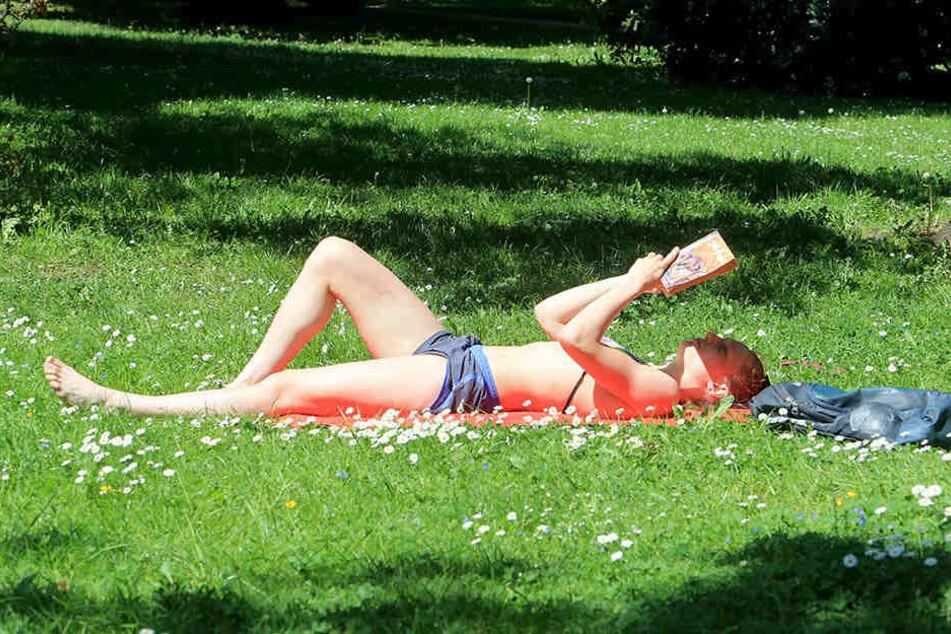 Sonnenanbeterin Lucile (19) genießt am Schlossteich die Hitze.