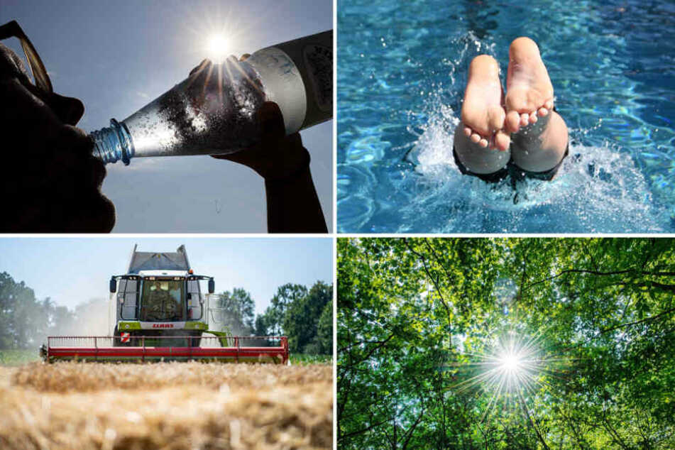 Der Absatz von Mineralwasser und anderen Erfrischungsgetränken ist kräftig gestiegen.