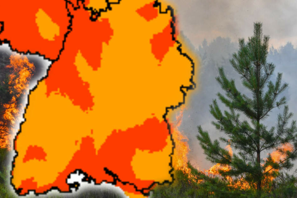 Die Hitze erhöht die Waldbrandgefahr. (Fotomontage)