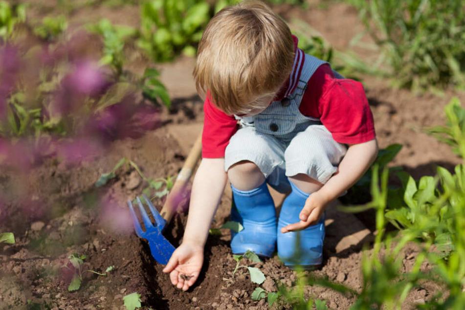 Das Kind war aus dem Garten verschwunden (Symbolfoto).