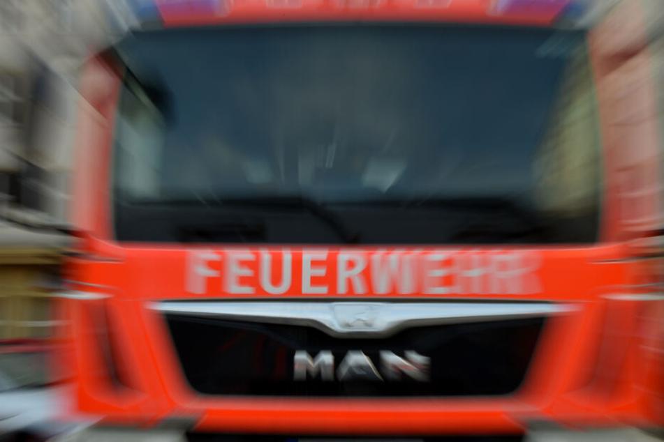 Die Feuerwehr rettete die Hündin aus den Flammen.
