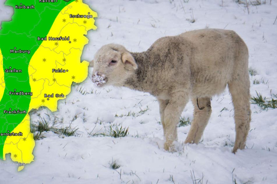 In den Höhenlagen wird am Wochenende der erste Schnee erwartet. (Symbolbild/Fotomontage)
