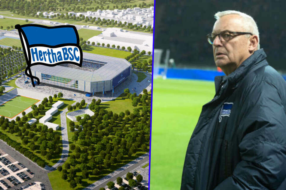 Neues Stadion im Olympia-Park: Hertha-Präsident wirft Berliner Senat fehlenden Willen vor