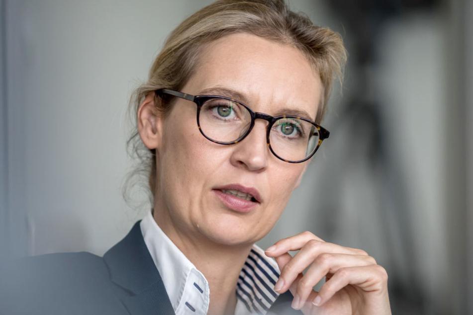 2017 zog die AfD mit Alice Weidel als Vorstandsmitglied in den Bundestag ein und wurde drittstärkste Kraft.