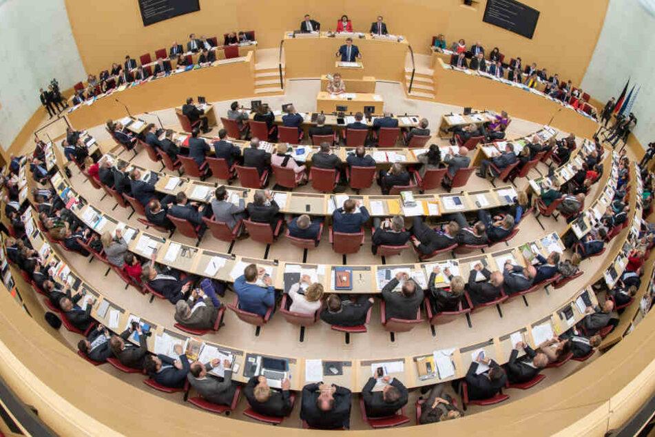 Die AfD ist schon mehrmals im Landtag aufgefallen, nun wurde ein Abgeordneter für seine Aussagen gerügt. (Archivbild)