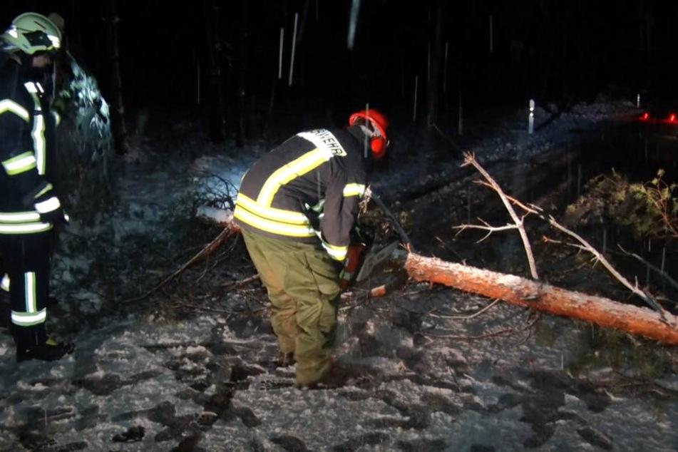 Ein Feuerwehrmann zerlegt einen Baum, der auf die Straße gestürzt ist.
