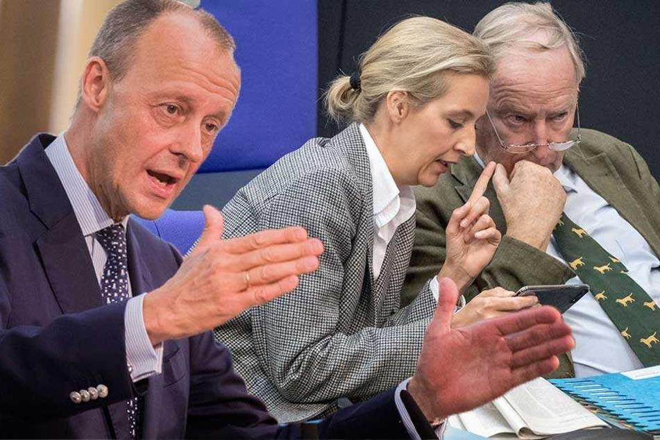 Strategie-Papier zeigt: Die Angst der AfD vor Merkels Ende