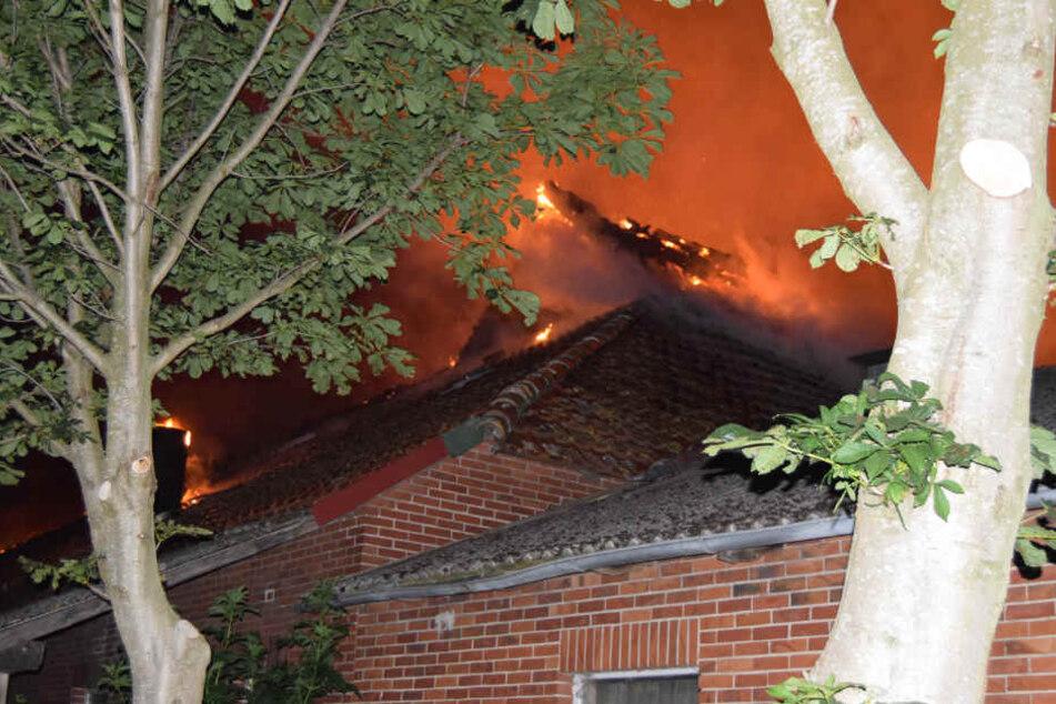 Das Feuer hinterließ einen riesigen Schaden im Betrieb.