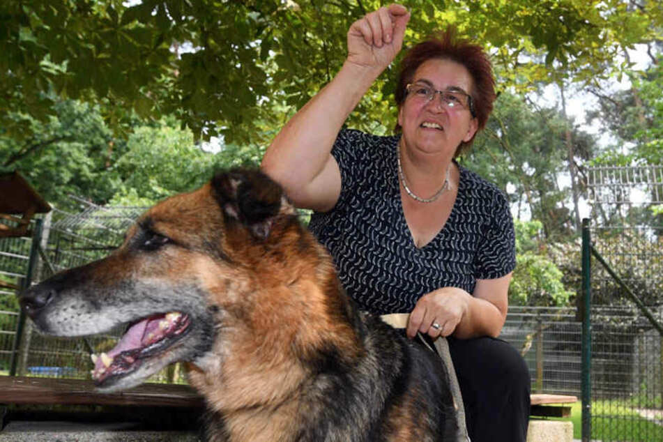Gabi Votsmeier nimmt die Tiere auf.
