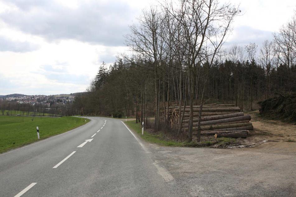 An diesem Waldstück bei Voigtsgrün musste die damals 18-Jährige sterben.