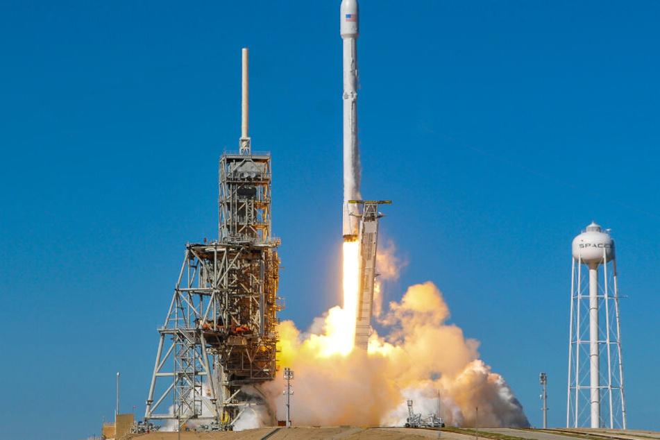 Eine SpaceX-Rakete vom Typ Falcon 9 hebt ab. (Archivbild)