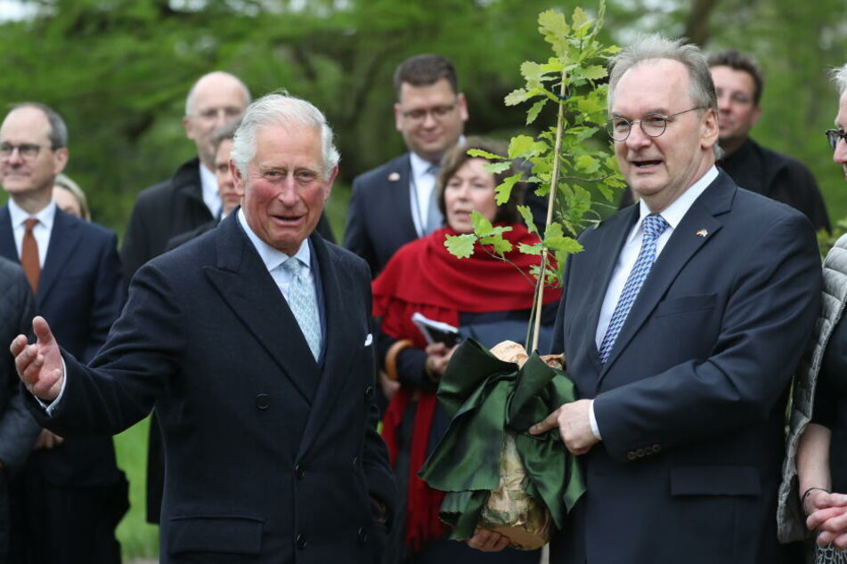 Auf seiner Deutschlandreise macht Prinz Charles am Mittwoch auch Halt in Dessau, wo er zusammen mit Ministerpräsident Haseloff einen Baum pflanzte.