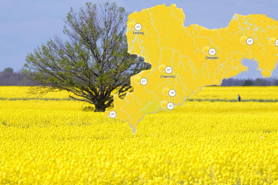 Sonne satt in Sachsen, doch das wird sich ganz schnell ändern