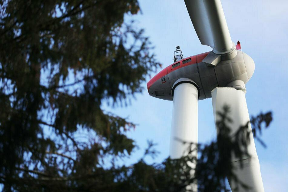 In Waldflächen sollen etwa 300 brauchbare Flächen für Windkraftanlagen zu finden sein. (Symbolbild)