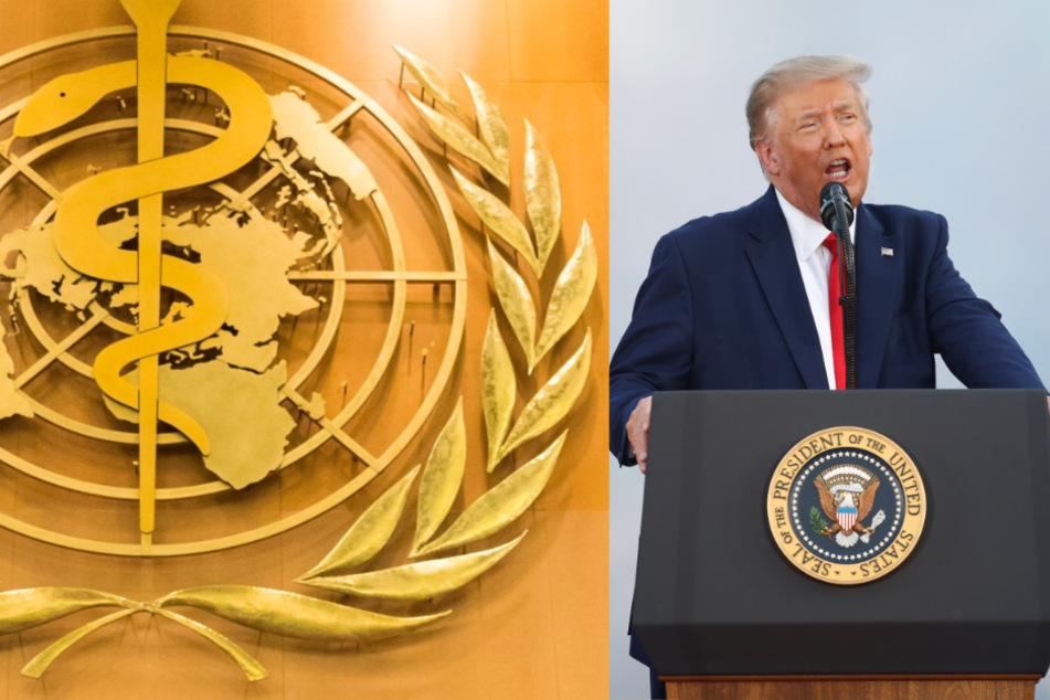 Senator verkündet Schock: USA offiziell aus WHO ausgetreten