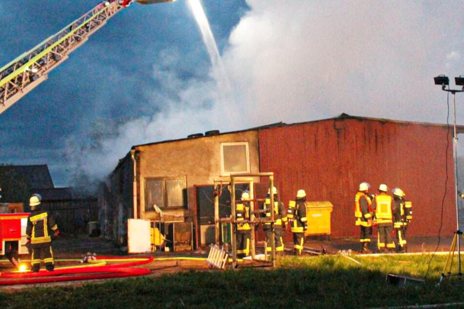 Frankfurt: Verheerender Blitzeinschlag? Schweinestall brennt lichterloh, mehrere Tiere sterben qualvoll