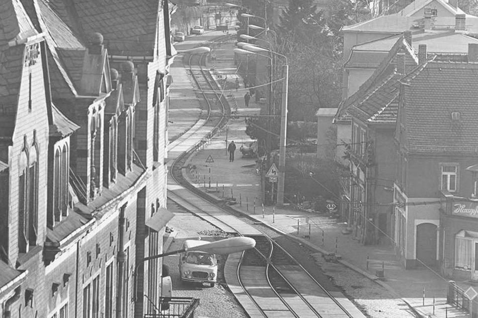 """Auf diesem Bild schlängelt sich die """"Linie 4"""" noch nach Pillnitz."""