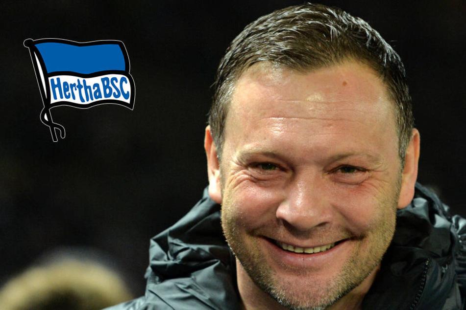 """Witzige Wette um """"Doktor"""" Dardai: Kommt der Hertha-Trainer im Kleid zur nächsten PK?"""