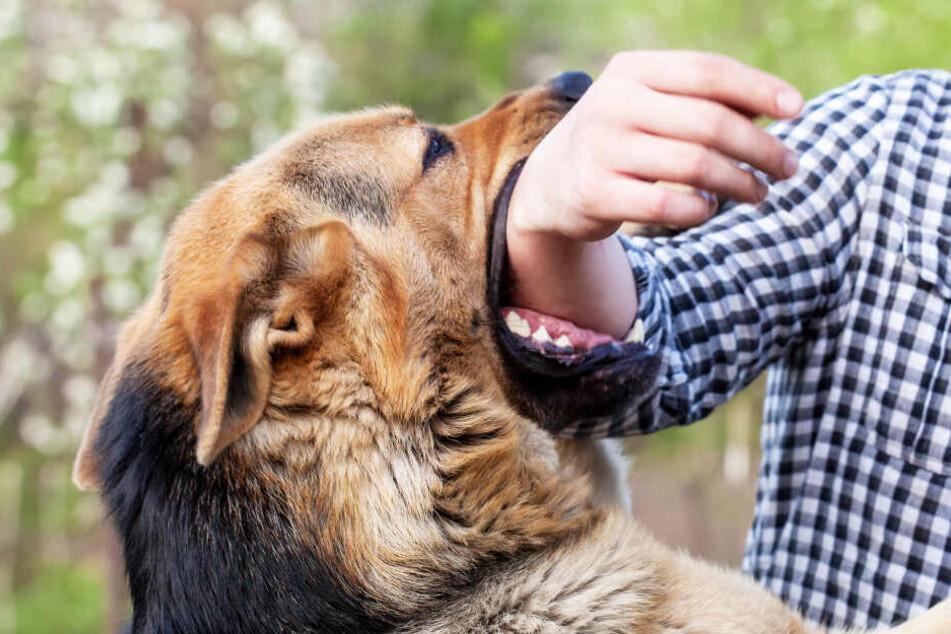 Hund greift Kind (2) und seinen Vater an, der sieht keinen anderen Ausweg