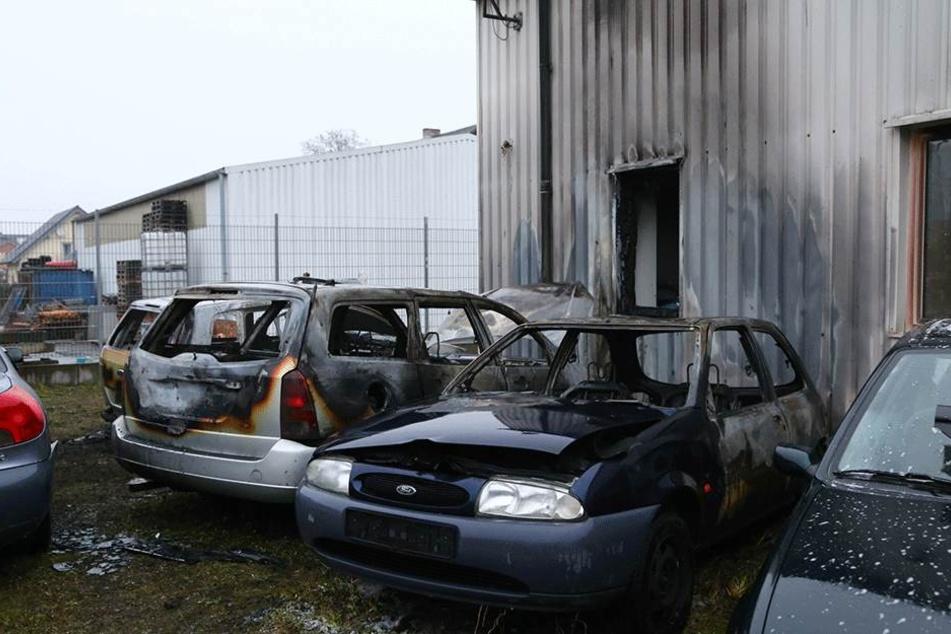 Die ausgebrannten Autos stehen vor dem durch die Flammen beschädigten Autohausgebäude.