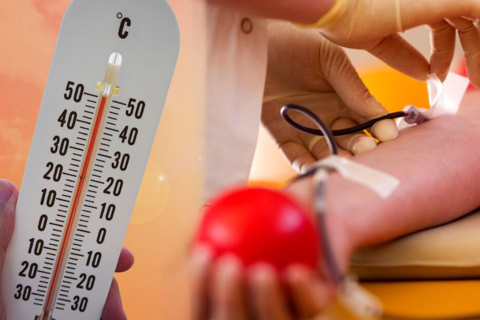 Zu warm oder schon im Urlaub? Im Sommer wird deutlich weniger Blut gespendet