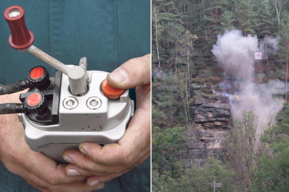 Wo das Fällen zu gefährlich ist: Sachsenforst lässt Bäume sprengen
